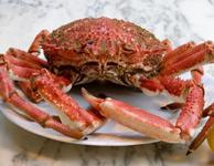 couvert ancien homard et crustacé