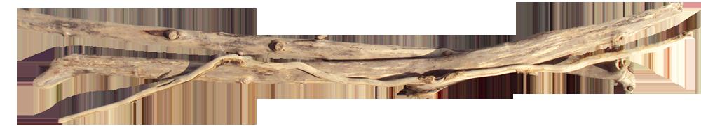 Loisirs dans le finist re sud les incontournables for Realisation bois flotte